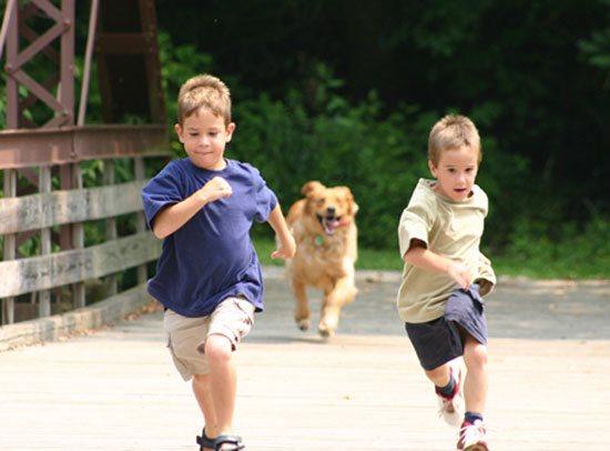 Những dấu hiệu nhận biết trẻ có năng khiếu đặc biệt